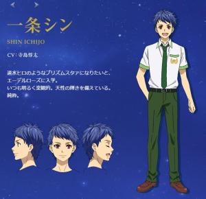 prad6 profile shin